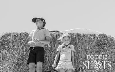 Inland Rail Foodie Stories – Bendidee Farm